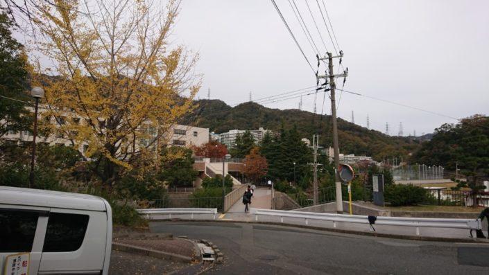 神戸大学国際文化学部に続く橋